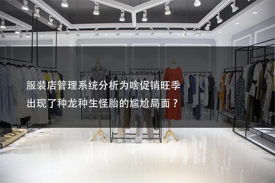 服装店管理系统分析为啥促销旺季出现了种龙种生怪胎的尴尬局面?